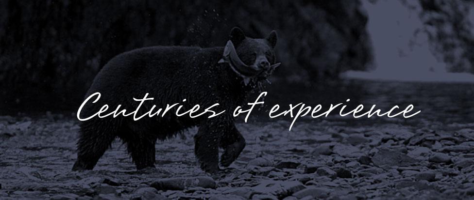 The Bear claim